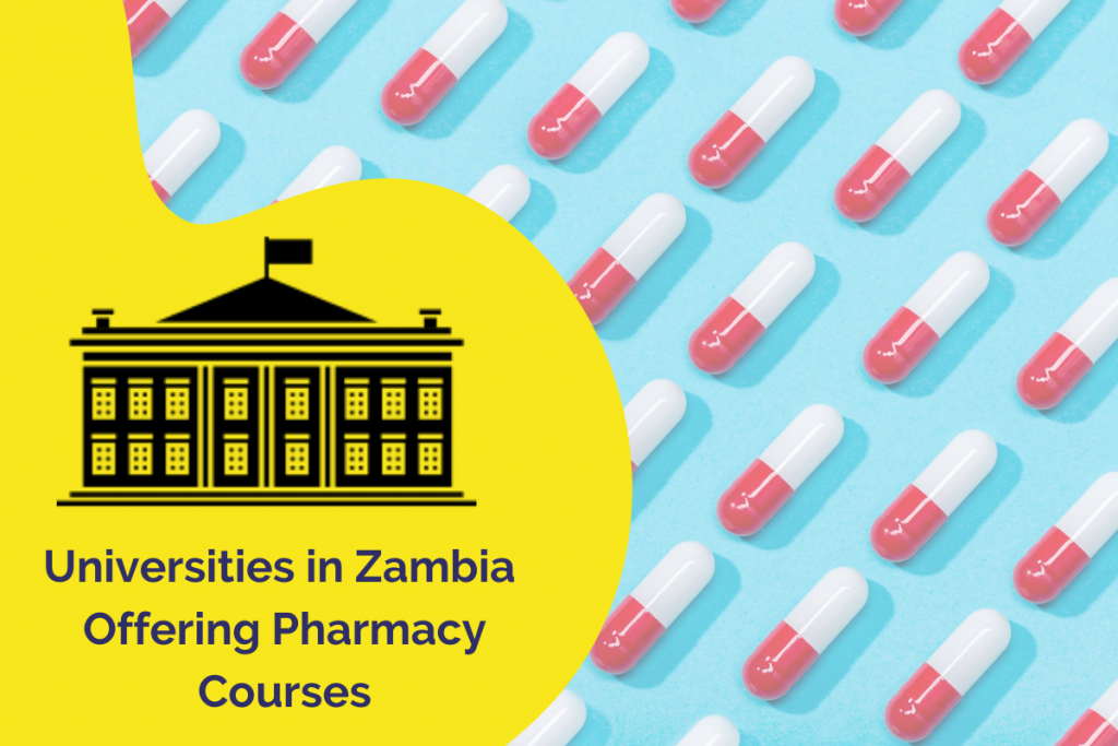 Universities in Zambia That Offer Pharmacy